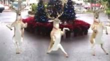 เอาซักหน่อย!! เดี๋ยวตกเทรนด์... Merry Christmas !