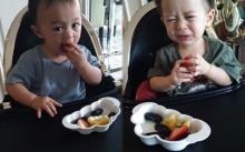 """มาดู """"สายฟ้า-พายุ"""" กับการแข่งกันกินผลไม้ของโปรด บอกเลยน่าเอ็นดู๊วววว!! (คลิป)"""
