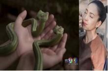 """รวมฉาก CG สวยๆใน """"นาคี"""" ที่ชาวเน็ตต่างชื่นชม! (มีคลิป)"""