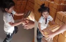 น้องมะลิ พาขวัญ 2 ขวบแล้ว กลับมาจากโรงเรียนก็ช่วยพี่จ๋าขนของ น่ารักเวอร์
