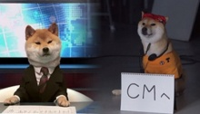 น่ารักเว่อร์!!ทีวีญี่ปุ่นไอเดียบรรเจิด จับสุนัขอ่านข่าวกระชากเรทติ้ง