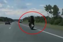 งงไปเลย!!! เมื่อเธอคนนี้เห็น หมี ซิ่งมอไซค์ฯอยู่บนถนน??