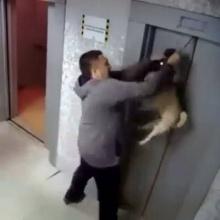 คลิปเตือนใจ ระวังหมาหนีลิฟท์!!