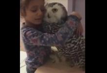 น่ารักที่สุด!! เพื่อนซี้เด็กน้อยกับนกฮูกมิตรภาพต่างสายพันธุ์