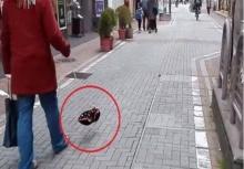 คุณพระ!! ... แตกตื่นทั้งเมือง เมื่อชายคนนี้ จูงสุนัขล่องหน มาเดินเล่น
