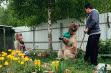 คลิปอมยิ้ม!คู่รักรัสเซียเลี้ยงหมีกินอยู่เยี่ยงมนุษย์