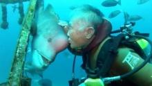 คุณลุงดำน้ำลงไปหาเจ้าปลาเป็นประจำ 25 ปี จนเกิดเป็นความผูกพันฉันเพื่อน!! (คลิป)