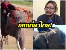 สื่อนอกตีข่าวไทยทารุณช้างหัวเหวอะ คว่ำบาตรเลิกเที่ยว – สัตวแพทย์ชี้ใช้ขอปรามตัวดื้อ (คลิป)