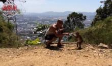 เมื่อฝรั่งอยากเล่นกับลิงไทย ก็เป็นแบบนี่แหละ