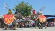 อลังการตระกาลตา การแสดงช้าง ยุทธหัตถี ที่ 'บุรีรัมย์'!