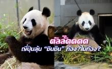 น่ารักเบอร์ไหนถามใจดู? สวนสัตว์ญี่ปุ่นเตรียมประกาศข่าวดีแพนด้าตั้งท้อง!! (คลิป)