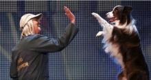 หมาสุดกวน!!! ที่ทำให้ทุกคนในห้องส่งตกหลุมรัก!!!