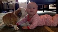 อย่าปล่อย เด็กเล็กๆ และ น้องหมา อยู่ด้วยกัน ไม่งั้น เรื่อง(ชวนอมยิ้ม)แบบนี้จะเกิดขึ้น!