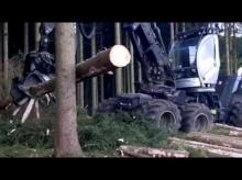 สุดยอดเครื่องตัดต้นไม้ ที่คุณยังไม่เคยเห็น