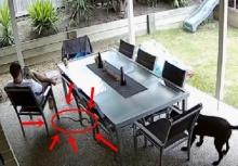 เกือบตายไม่รู้ตัว!!นั่งชิลอยู่หน้าบ้าน งูพิษเลื้อยผ่านมาใกล้!!