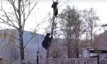 """ระทึกขวัญ! คนถูก """"หมี""""ด้วยการปีนต้นไม้ไล่ล่าตามขนาดนี้"""