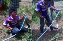 คลิประทึกใจ!นาทีชีวิตกู้ภัยจับงูเหลือม5เมตร แต่กลับถูกรัดแบบนี้!!(ชมคลิป)