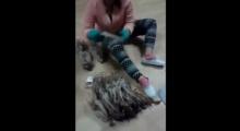 ชาวเน็ตจวก สาวใช้เท้าเหยียบปลาหมึกแห้งขาย