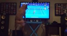 Feelingน้องหมาเชียร์กีฬาสุดขีด!!