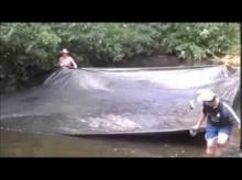 เจ๋งอ่ะตกปลาไม่ต้องใช้เบ็ด วิธีจับปลาแปลกๆ