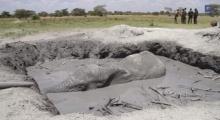 ซวยจริง!! ช้างจมบ่อโคลนนาน 12 ชั่วโมง และวิธีช่วยสุดทึ้ง!!