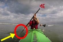 ระทึก!! นักพายคายัคโดนฉลามโดนงับก่อนจู่โจมซ้ำ