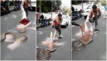 เมื่องูเหลือมตัวเบ้อเริ่มเจอกรวยแล้วเป็นยังไง?