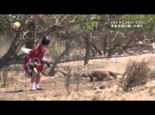 เผ่นป่าราบ เกมญี่ปุ่นโคตรโหด! ให้สาวญี่ปุ่นวิ่งหนีมังกรโคโมโด