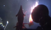 ระทึก! 2 หมึกยักษ์ รุมโจมตีเรือดำน้ำ