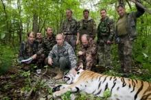 ดูชัดๆ!! เสือ ปูติน เขมือบสุนัขจรจัด!