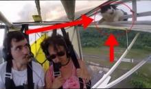 เฮ้ยแกขึ้นไปได้ไง!!! นักบินถึงกับอึ้ง เมื่อมีแขกไม่รับเชิญโผล่มาขณะเครื่องกำลังบิน!!
