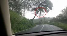 ขุ่นพระ!!! ขับรถมาดีๆ เจอแบบนี้ห้อยอยู่บนต้นไม้ เป็นใครก็ต้องหลอน!!!