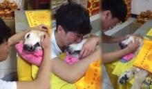 สุดเศร้า!!หนุ่มร่ำไห้ กอดลาหมาสุดรักจากโลกครั้งสุดท้าย