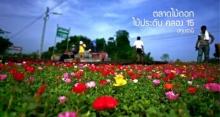 หมู่บ้านไม้ดอกไม้ประดับ คลอง 15