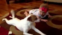 หมาน้อยสอนทารกฝึกคลาน น่ารักจุงเบย