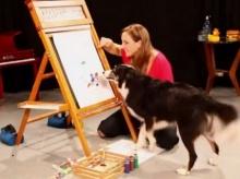 มะหมาแสนฉลาด โชว์ความสามารถทั้งวาดรูป-เล่นเปียโน