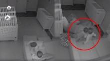 เอ็นดูมาก!! เมื่อพ่อแม่ตั้งกล้อง ดูลูกชายฝาแฝด ตกดึกแทบอึ้ง ไม่คิดว่าจะเจอแบบนี้!! (คลิป)