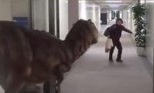 สวมหุ่นไดโนเสาร์แกล้งคน วิ่งหนีกระเจิง!