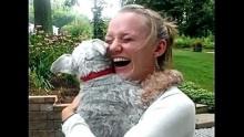 เจ้าหมาน้อยเป็นลม หลังดีใจสุดขีดได้เจอเจ้านายในรอบ 2 ปี