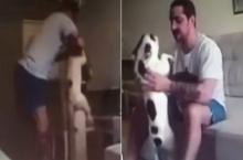 หนุ่มโหดสติแตก จับหมาทุ่มลงพื้นแล้วทำเฮดบัตต์ซ้ำ