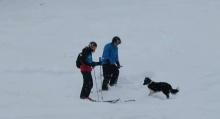 หมาน้อยวิ่งไปขวางนักสกี เพื่อขอให้เขาเล่นด้วย!