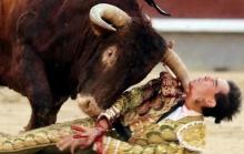 คลิปนาทีชีวิต มาทาดอร์ถูกวัวกระทิงขวิดเข้าที่ลำคอจนเลือดอาบ!!