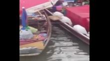 ตลาดน้ำอัมพวาถึงกับฮือฮาเมื่อเจ้าตัวนี้มากลางตลาดน้ำ