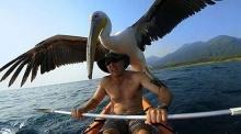 ซึ้งเลย!!จากที่เขาได้ช่วยชีวิตนกตัวนี้ไว้ เขาก็ไม่โดดเดี่ยวอีกต่อไป