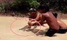 คลิปสุดทึ่ง! เด็กลงเล่นน้ำ ไล่ล่าจับงูหลามยักษ์มือเปล่า หัวเราะสนุกสนาน(คลิป)