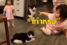 เก๋าหร๋อ คลิปน่ารักๆของเด็กน้อยกับเจ้าแมว