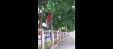 หัวเราะหนักมาก!!! เมื่อเพื่อนติดอยู่บนเสาข้างรั้วลงมาไม่ได้ เป็นเพราะอะไรลองดู!!!