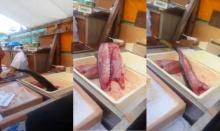 ปลาญี่ปุ่นสดของแท้ ถูกแล่ ตัดหัว ยังดิ้นพล่าน!! (คลิป)