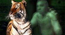 เสือสมิง ตำนาน ไสยศาสตร์กินคน