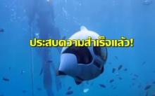 สุดยอด!!!  จีนประสบความสำเร็จแล้ว..ผลิตโดรนปลาใช้งานใต้น้ำ (มีคลิป)